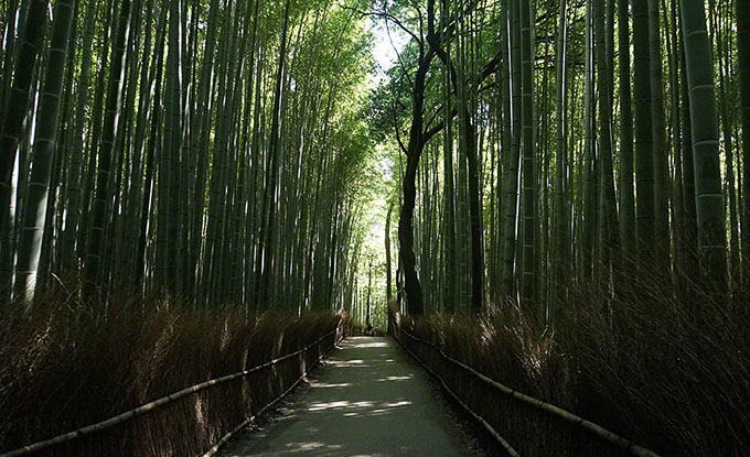 japan-travel-navi.jp